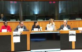 Una proposta di pace per la Siria al Parlamento Europeo